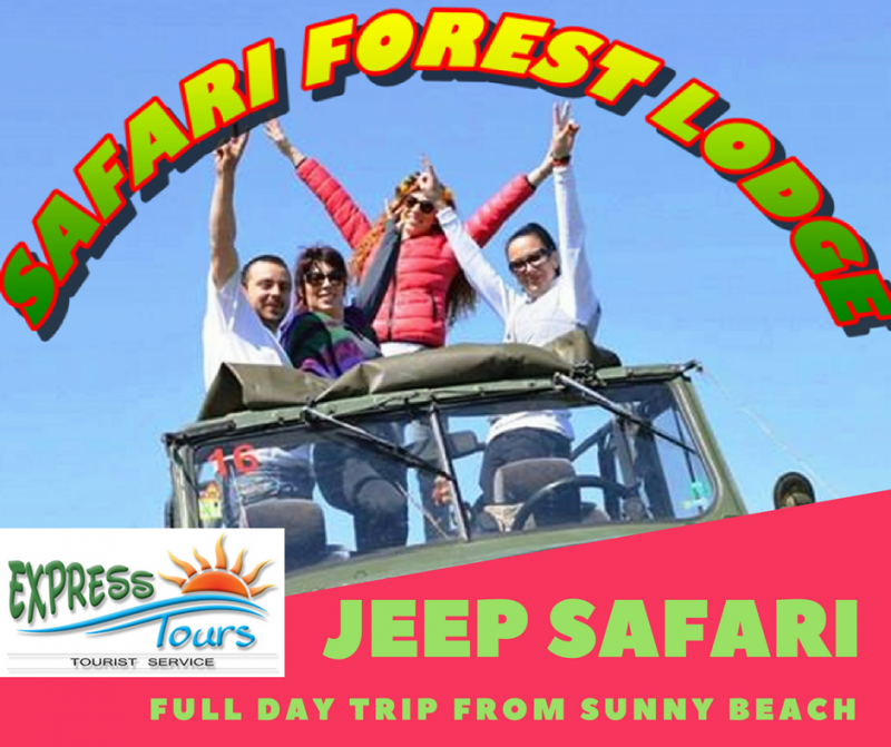 Jeep Safari - Forest Lodge
